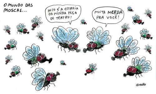 mundo das moscas muita merda