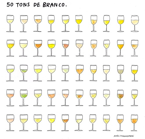 wine 50 tons de branco.jpg